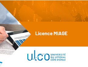 1594994741-Licence MIAGE-formation9.jpg